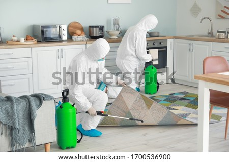 Workers in biohazard suits disinfecting house Royalty-Free Stock Photo #1700536900