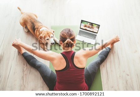 Top view at fit sporty healthy woman sit on mat in Upavistha Konasana pose, doing breathing exercises, watching online yoga class on laptop computer. Her beagle dog keeping company next on the floor. #1700892121