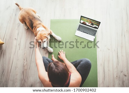 Top view at fit sporty healthy woman sitting on yoga mat, watching online yoga class on laptop computer and petting her beagle dog keeping company next on the floor. #1700902402