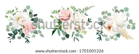 Blush pink rose and sage greenery, ivory peony, hydrangea, ranunculus flowers, eucalyptus vector floral bunches. Floral pastel watercolor style wedding bouquets. All elements are isolated and editable Royalty-Free Stock Photo #1701005326