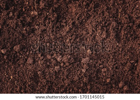 Close-up of fertile loam for the background Royalty-Free Stock Photo #1701145015