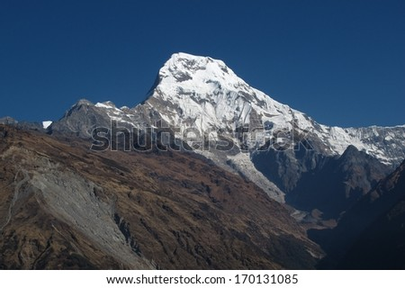 Majestic Annapurna South, view from Ghandruk  #170131085
