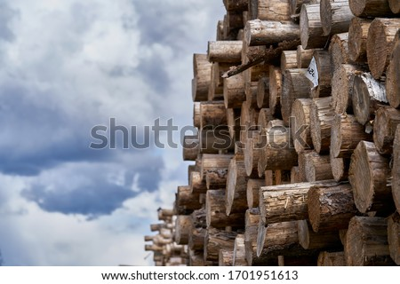 Natural wooden background - closeup of chopped firewood. Firewood stacked and prepared for winter Pile of wood logs. Royalty-Free Stock Photo #1701951613