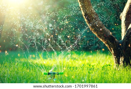 Garden, Grass Watering. Smart garden activated with full automatic sprinkler irrigation system working in a green park, watering lawn, flowers and trees. sprinkler head watering. Gardening concept. #1701997861