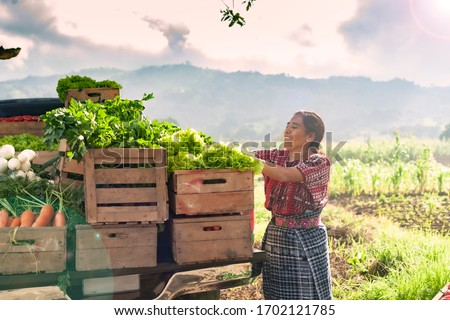 Happy indigenous woman with fresh vegetables in her truck, in the rural area of Guatemala. #1702121785