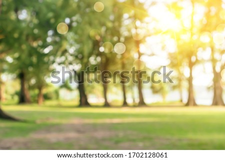 Blur nature bokeh green park by beach and tropical coconut trees in sunset time. Royalty-Free Stock Photo #1702128061