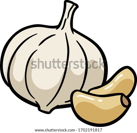 Vector Cartoon Fresh Whole Garlic and Garlic Cloves Royalty-Free Stock Photo #1702191817