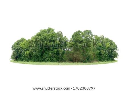 Trees island isolated on white background #1702388797
