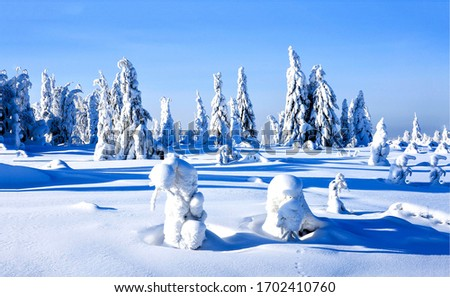 Winter snow covered nature landscape. Snow covered winter nature view. Winter snow nature scene. Winter snow landscape #1702410760