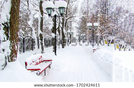 Winter snow park alley bench view. Winter snow park bench. Snow covered bench in winter park alley #1702424611