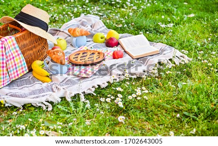 Picnic basket on a plaid and a green meadow with flowers. Lunch sweet cake, croissants, drinks, fruits in the park on the green grass. Summer picnic background concept, Copy space.