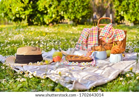 Picnic basket on a plaid and a green meadow with flowers. Lunch sweet cake, croissants, drinks, fruits in the park on the green grass. Summer picnic background concept. Above, Copy space. Banner.