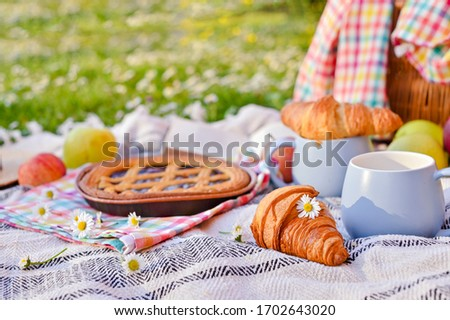 Picnic basket with fruit and bakery on a plaid and a green meadow with flowers.Lunch sweet cake, croissants, drinks, fruits in the park on the green grass. Summer picnic background concept. Copy space