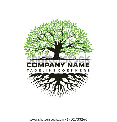 Creative abstract green tree with roots vector logo design template.  #1702733260