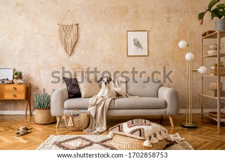 Stylish scandi compostion at living room interior with design sofa, commode, shelf, carpet, rattan pouf, plants, picture frame, macrame, personal accessories and dog lying on the couch.