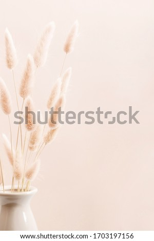 Home interior floral decor. Dried flowers, spikelets in vase on beige background. Royalty-Free Stock Photo #1703197156