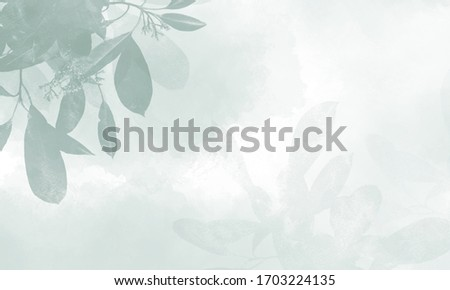 Beautiful background design minimalist and cute.Leaf background design. Abstract watercolor painting. Abstract background.Tropical leaves background. #1703224135