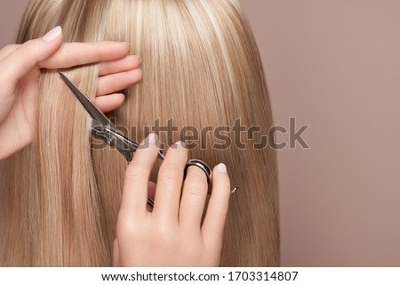 Hairdresser cuts long blonde hair with scissors. Hair salon, hairstylist. Care and beauty hair products. Dyed hair Royalty-Free Stock Photo #1703314807