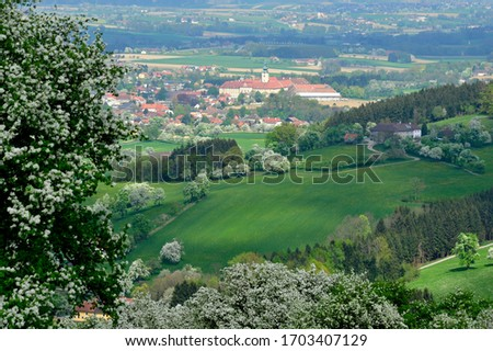 apple and pear trees in blossom in the lower austrian district mostviertel #1703407129
