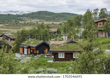 typical houses with moss covered roofs in Hardangervidda national park, Norway #1703546695