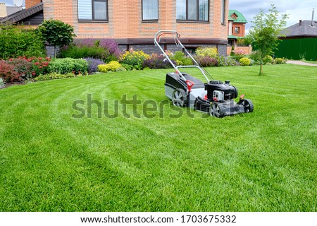 A lawn mower on a lush green lawn surrounded by flowers. The back yard of the house. Royalty-Free Stock Photo #1703675332