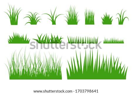 Green grass vector set. flat design