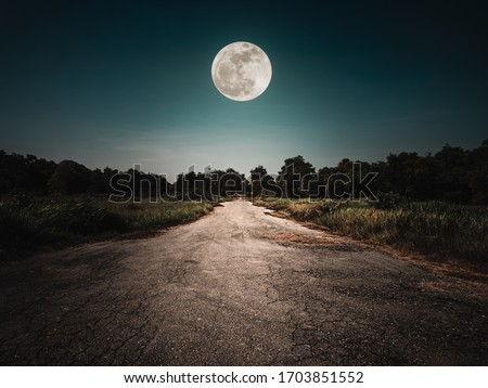 Landscape of night sky and bright full moon above wilderness area. Asphalt road leading into the forest at night. Serenity background.  Royalty-Free Stock Photo #1703851552