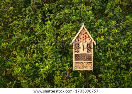 Insect hotel in a green hedge gives protection and a nesting aid to bees and other insects.Insect hotel in a green hedge gives protection and a nesting aid to bees and other insects. Royalty-Free Stock Photo #1703898757