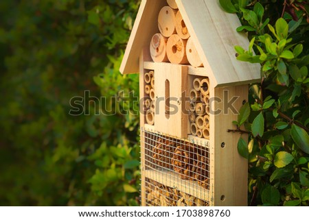 Insect hotel in a green hedge gives protection and a nesting aid to bees and other insects.Insect hotel in a green hedge gives protection and a nesting aid to bees and other insects. #1703898760