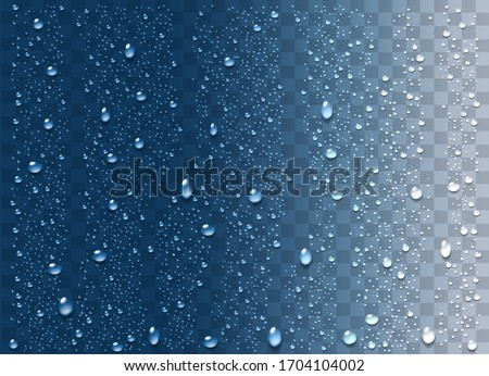 Realistic water droplets on the transparent background. Vector #1704104002
