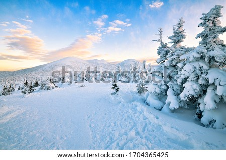 The summit mountain with sunset view in the winter at Aomori, Japan #1704365425