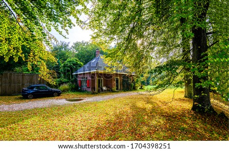 Autumn forest road house view. Road house in autumn forest. Autumn forest house #1704398251