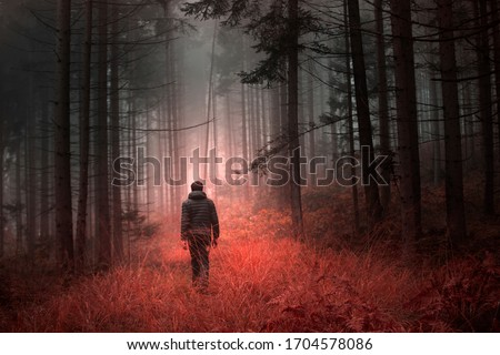 Man walking alone in magical dark orange red colored foggy wild forest landscape. Royalty-Free Stock Photo #1704578086