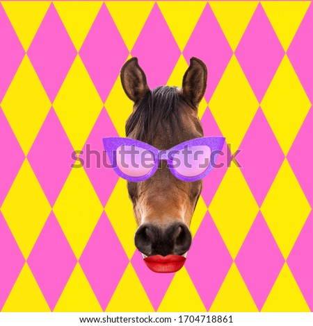 Abstract art collage. Concept horse wearing pink sunglasses with red lips on colorful background.