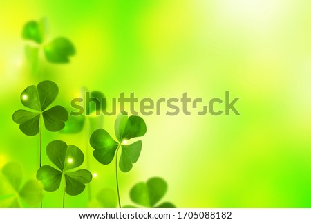 Green clover leaves on a background summer landscape. St.Patrick 's Day Royalty-Free Stock Photo #1705088182