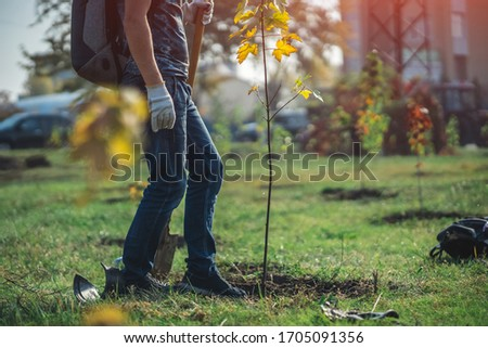 planting new trees with gardening tools in green park #1705091356