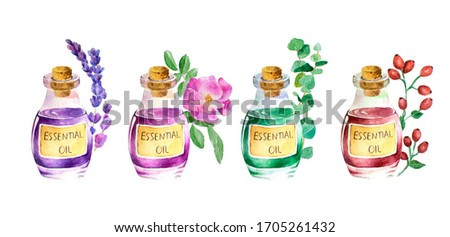 Bottle of lavender, rose, eucalyptus, rose hip essential oil and branches and flowers. Hand painted watercolor illustration for your design, isolated object on white background.