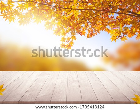 Table desk  and autumn background empty space for your product display #1705413124