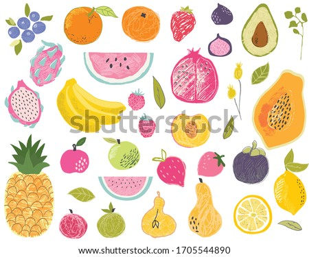 Set of exotic fruits in modern vector hand drawn scandinavian style,summer symbol, fruit salad.Doodle textured cute fruits, pineapple,apple,watermelon,mango,fig,lemon,strawberry,avocado,papaya #1705544890