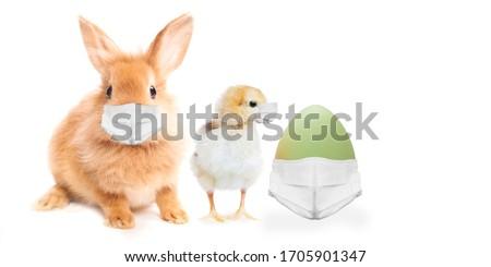 Easter Bunny, egg and chicken wearing face masks . Easter greeting card. Coronavirus alert for 2020.