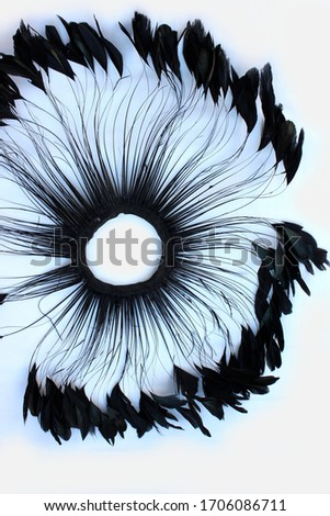 Frame of black feathers on a white background. Emo style frame made of boa (feather scarf) isolated on white. exotic soft beautiful black feather. Feathers laid out around. A fan in dark colors.