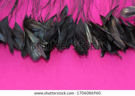 Frame of black feathers on a Pink background. Emo style frame made of boa (feather scarf) isolated on purple. exotic soft beautiful black feather. Feathers laid out around. A fan in dark colors.