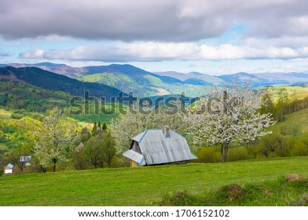 beautiful rural scenery in mountains. blossoming trees on the grassy hills. village in the distant valley. downshifting and sustainability concept Royalty-Free Stock Photo #1706152102