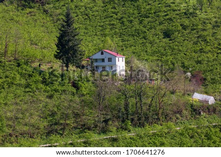 The natural texture and highland houses of Ordu, Persembe Plateau, Turkey #1706641276