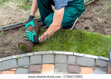 Landscape Gardener Laying Turf For New Lawn #1706672881