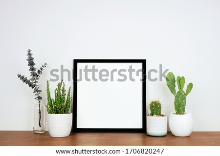 Mock up black square frame with potted plants and branch decor. Wooden shelf against a white wall. Copy space.