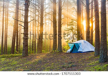Tourism concept. Dawn in a foggy forest with a lonely tent. Man lives in the forest #1707511303