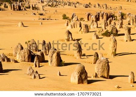 The Pinnacles, Nambung National Park, Cervantes, West Australia, Australia. #1707973021