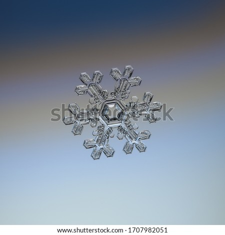Snowflake glittering on smooth gradient background. Macro photo of real snow crystal: elegant star plate with short ornate arms, hexagonal symmetry, glossy relief surface and large central hexagon. #1707982051