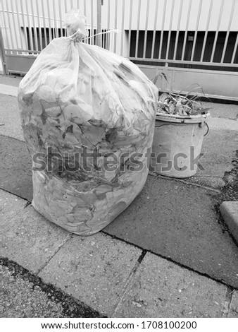 Tree leafs in the bag, autumn cleaning photography #1708100200